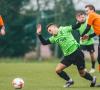 Kova dėl Vilniaus Supertaurės per statistikos prizmę