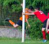 SFL savaitė: nemalonus techninis pralaimėjimas bei mėsmalė D diviziono viduryje