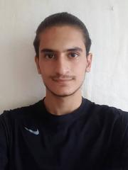 Seyed Arman  Taheri