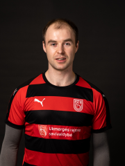 Egidijus Grinis
