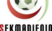 FK Trivartis- FK Medžiai